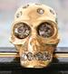 skullsmall